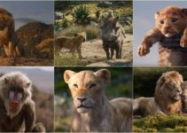 The Lion King 2019 Full HD Movie Leaked Online on TamilRockers