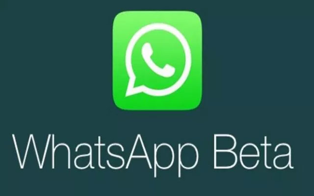 Download Latest WhatsApp Beta Version Apk